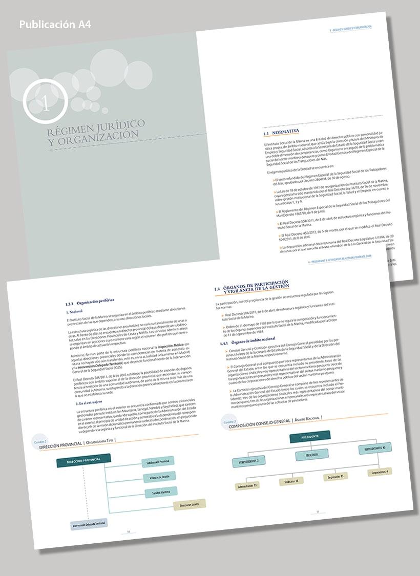 Informe Anual 2012 del ISM 0