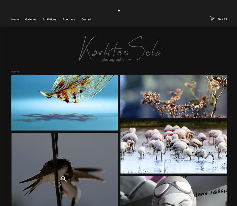 Mi Proyecto del curso: Portfolio fotógrafo Karlitos Solá 6