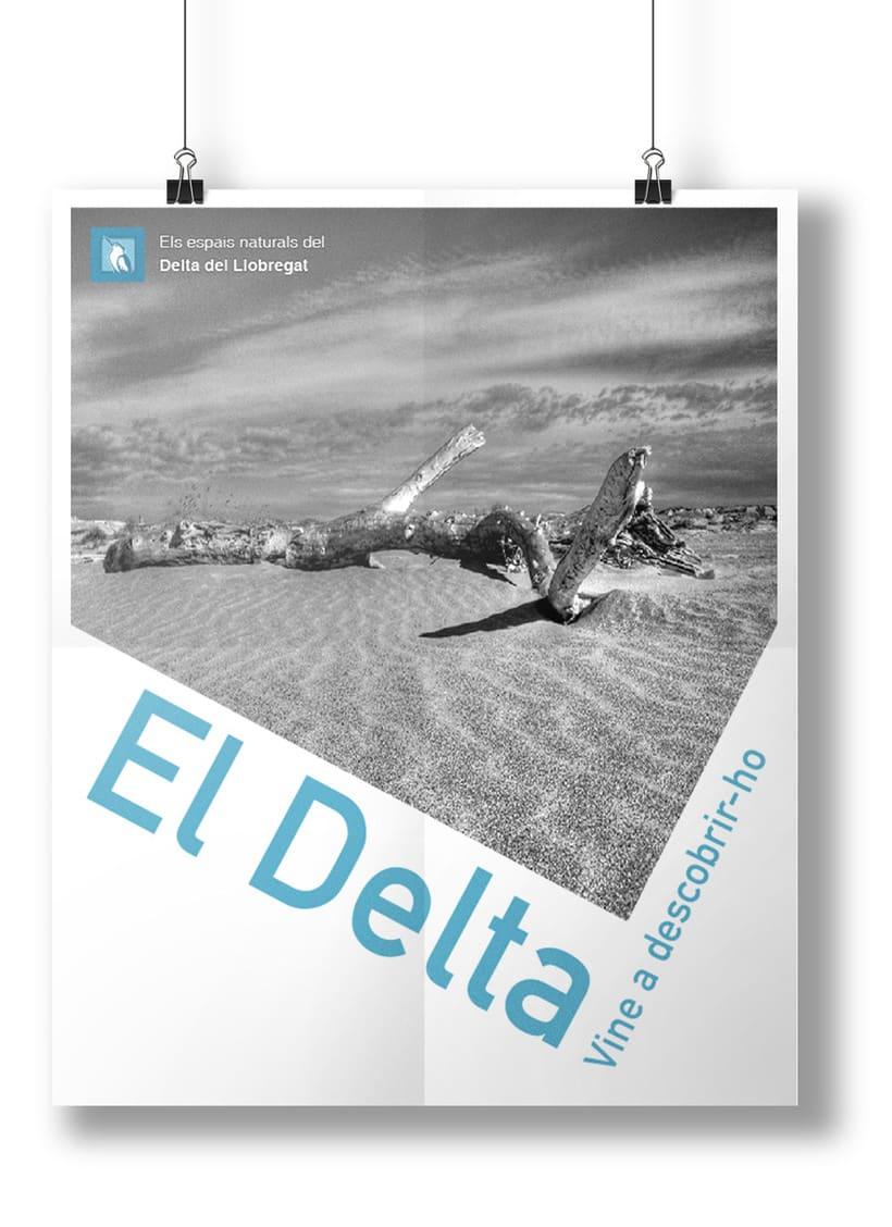 Cartel - EL DELTA DEL LLOBREGAT 2