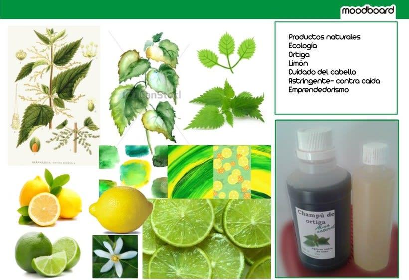 Proyecto para Alma Natural - cosmética ecológica 2