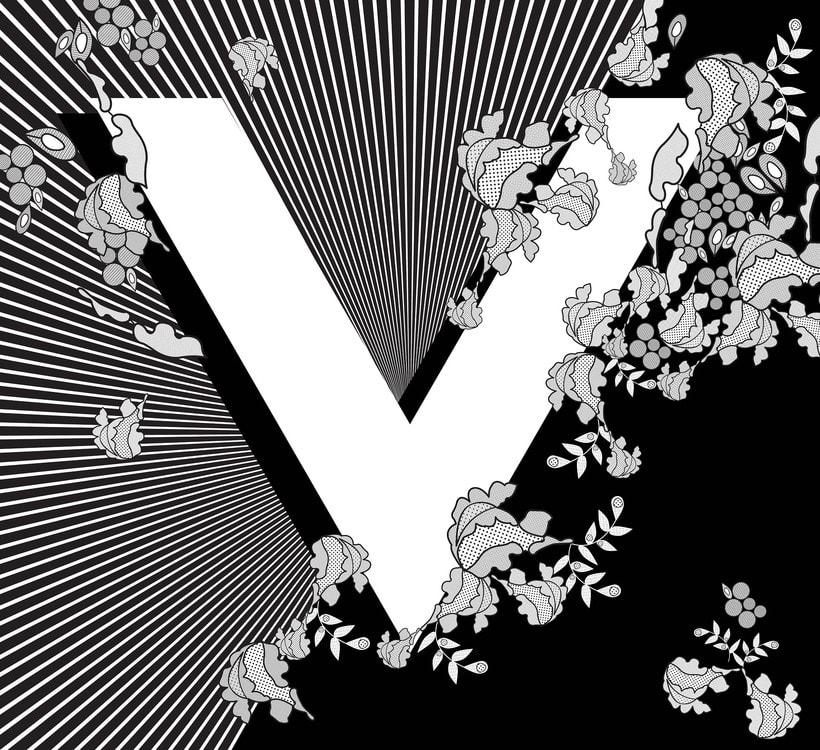 V is for Veil 0