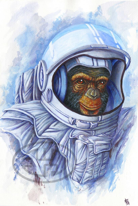 Space monkey -1