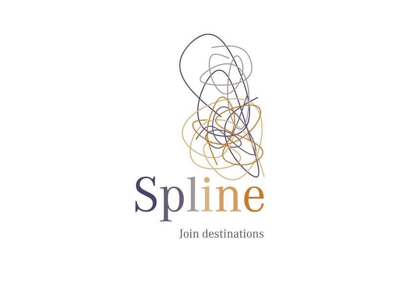 Spline_ identidad corporativa de una aerolínea 1