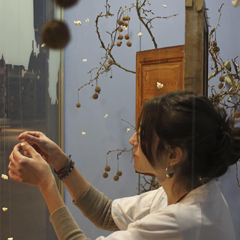 Una ventana abierta a la imaginación (1º premio concurso regional de Escaparatismo) 2