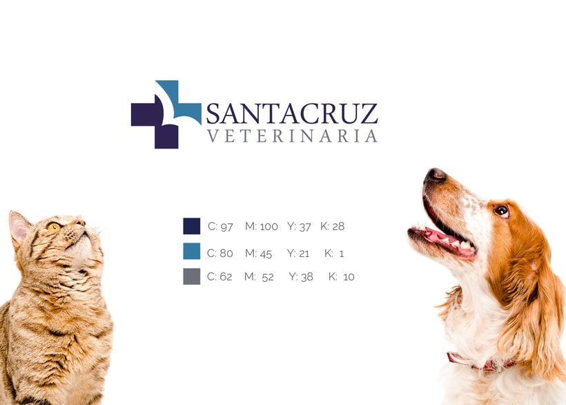 SANTA CRUZ VETERINARIA 4