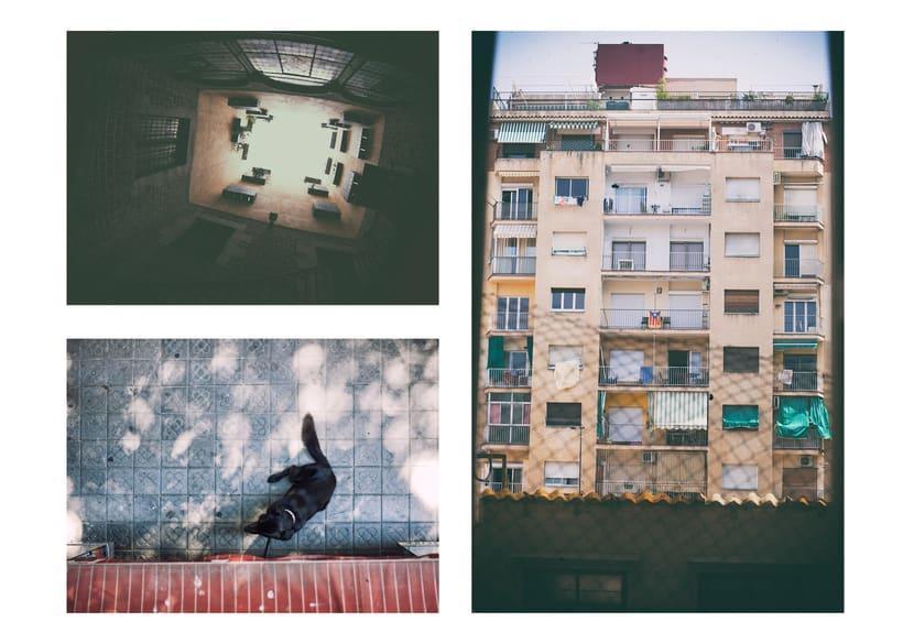 Photos 11