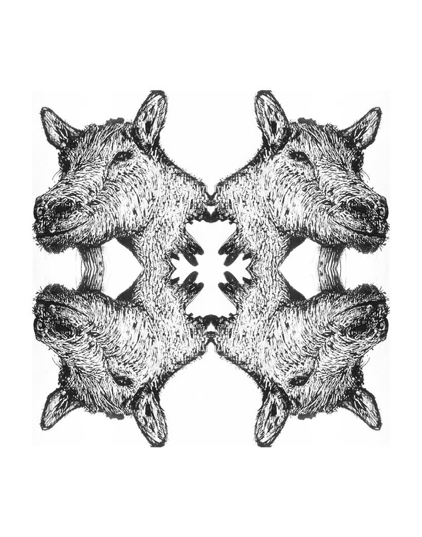 Extraños animales. 16
