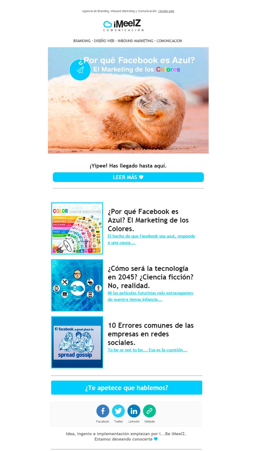 Newsletter · Creación, Diseño y envío de campañas  2