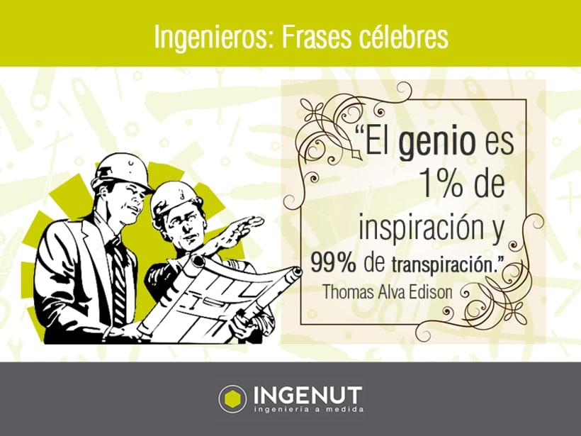 Infografías y Creatividades INGENUT  6