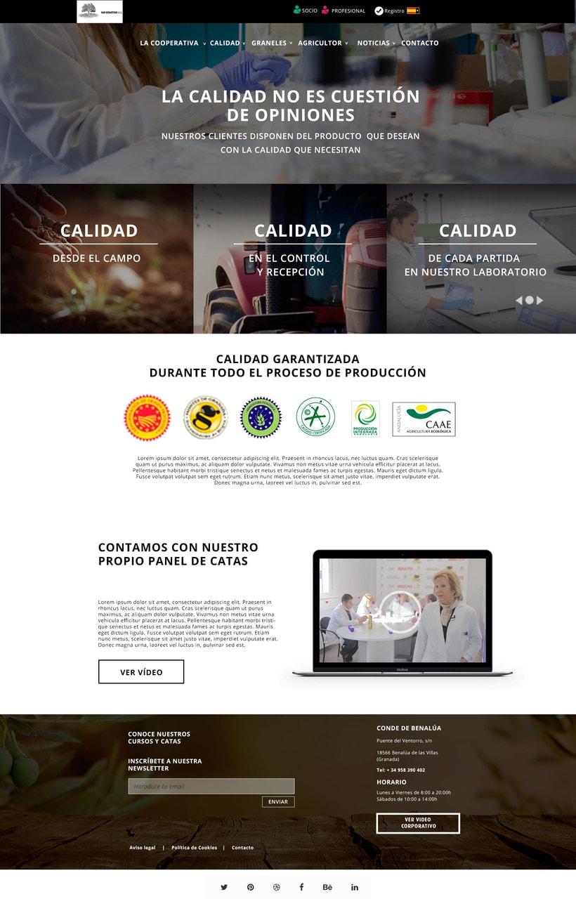 Diseño web. SCA 1