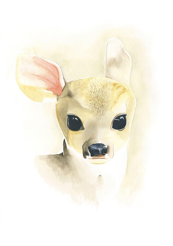 Little Deer -1
