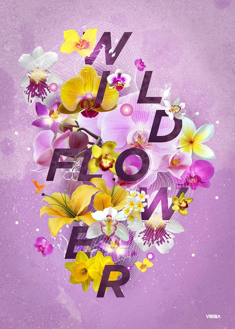 Wild Flower Poster 0