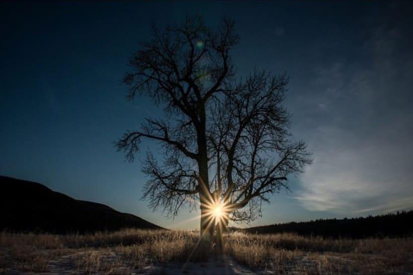 """El mundo a través del lente de Emmanuel """"el Chivo"""" Lubezki 8"""