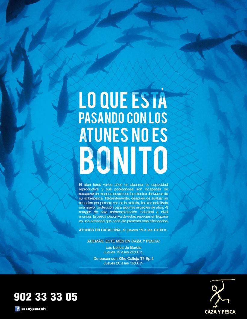 Caza y Pesca / Atunes y Salmones -1