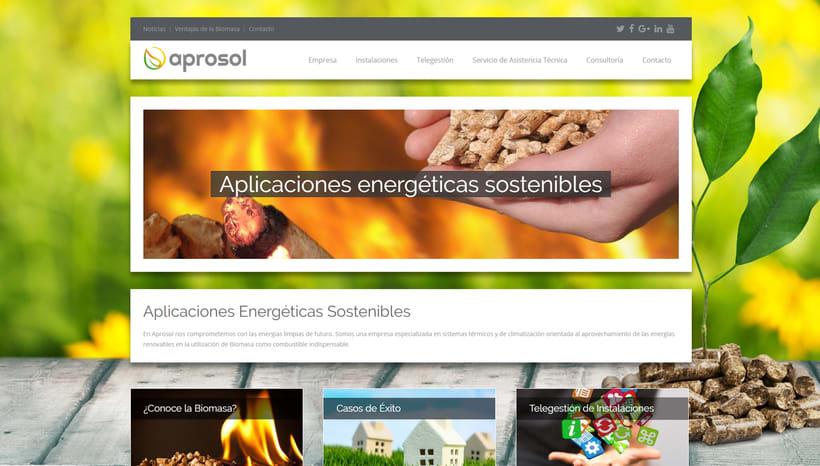 """Diseño Web """"Aprosol"""" -1"""