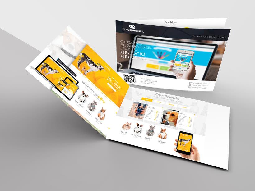 proyecto de app portafolio 27