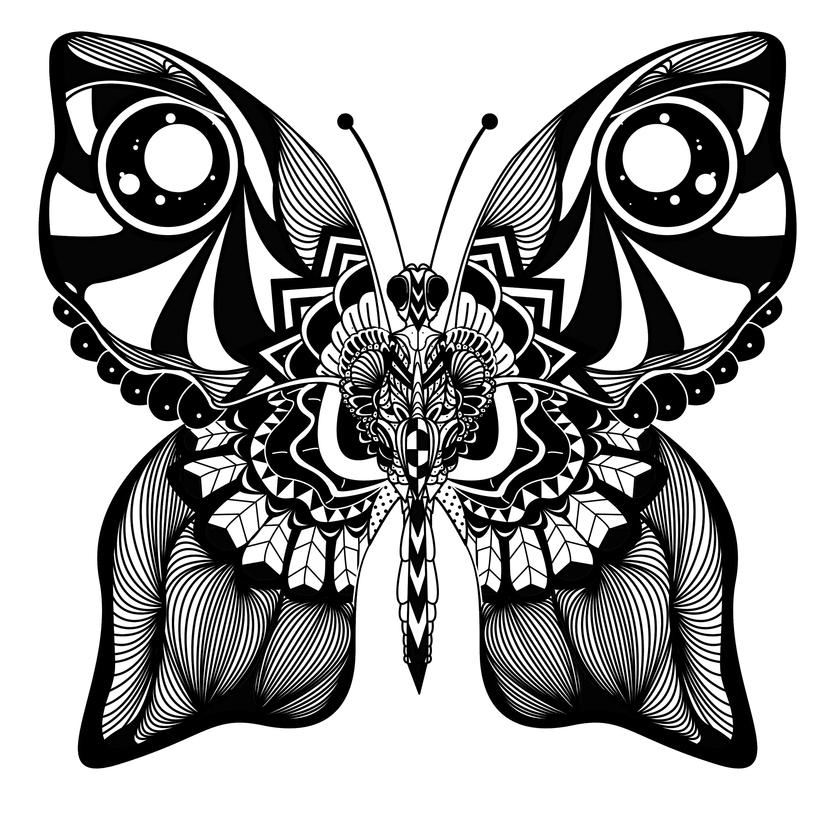 ilustracion -1