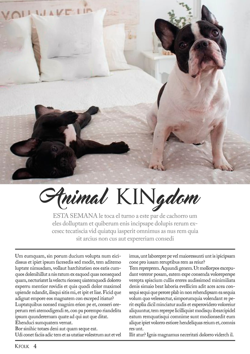 Revista KFOLK 5