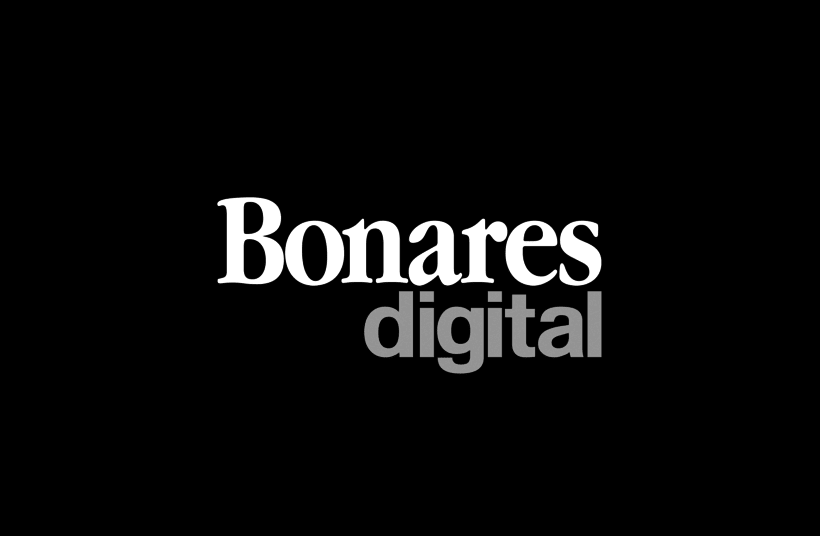Identidad Bonares Digital 2