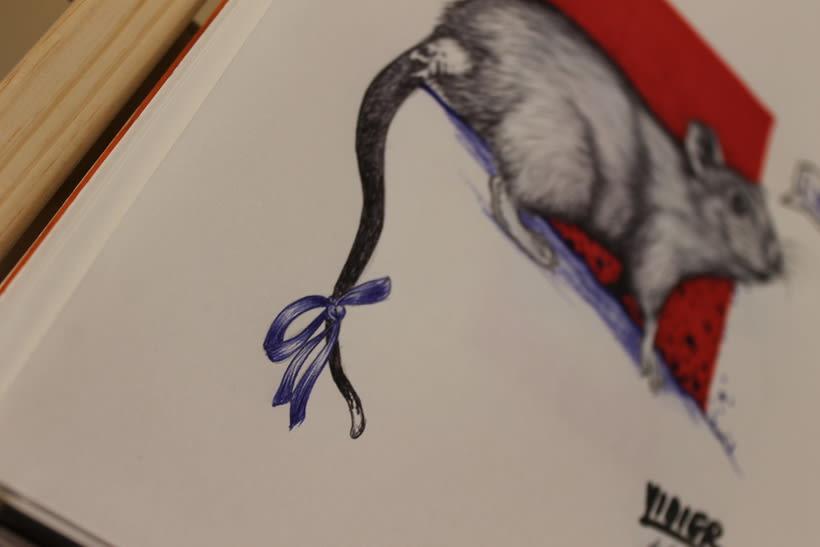 Rata gris 0