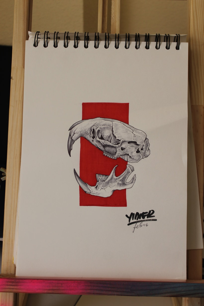 Rata gris - Cabeza 0