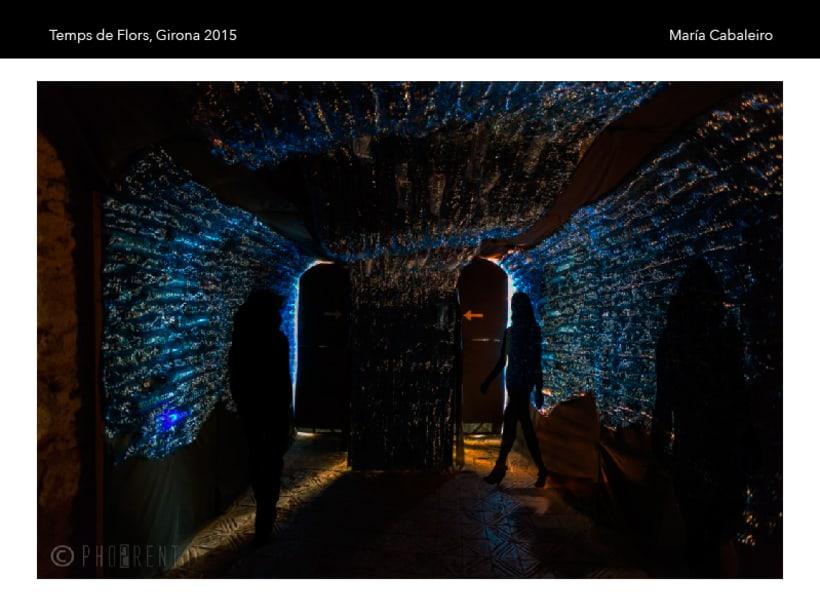 El deshielo: Proyecto seleccionado para Temps de Flors, Girona 2015 ( 1er curso Interiorismo gráfico ) 0