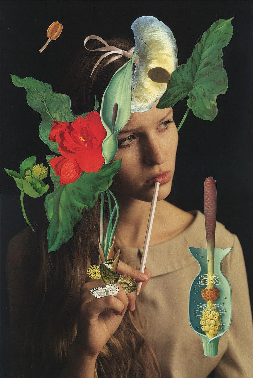 Los collages Magdalena Franczuk y Ashkan Honarvar  3
