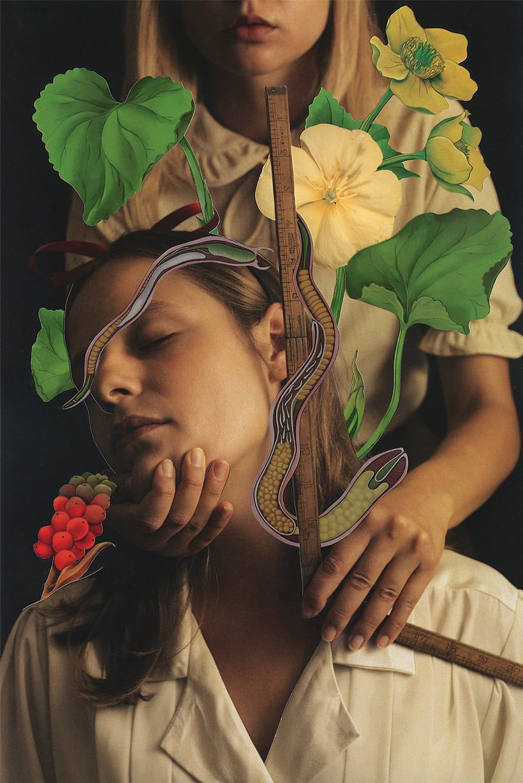 Los collages Magdalena Franczuk y Ashkan Honarvar  5