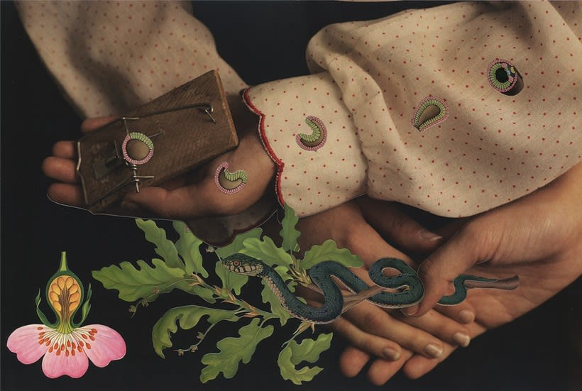 Los collages Magdalena Franczuk y Ashkan Honarvar  7