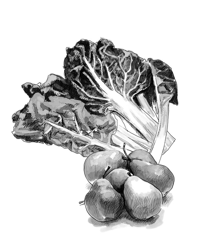 Ilustraciones gastronómicas 1
