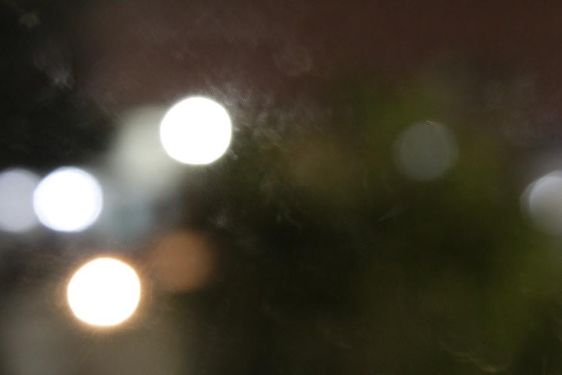Primeras Fotos Con Camara Reflex 8