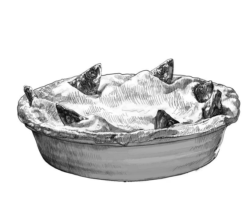 Ilustraciones gastronómicas 0