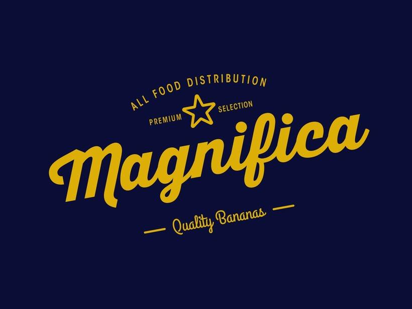 Magnifica Branding 1
