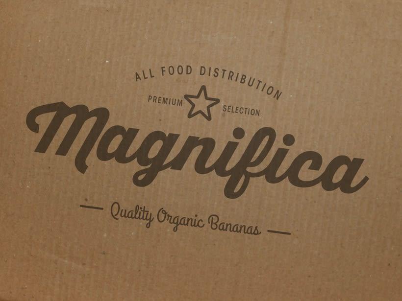 Magnifica Branding 2