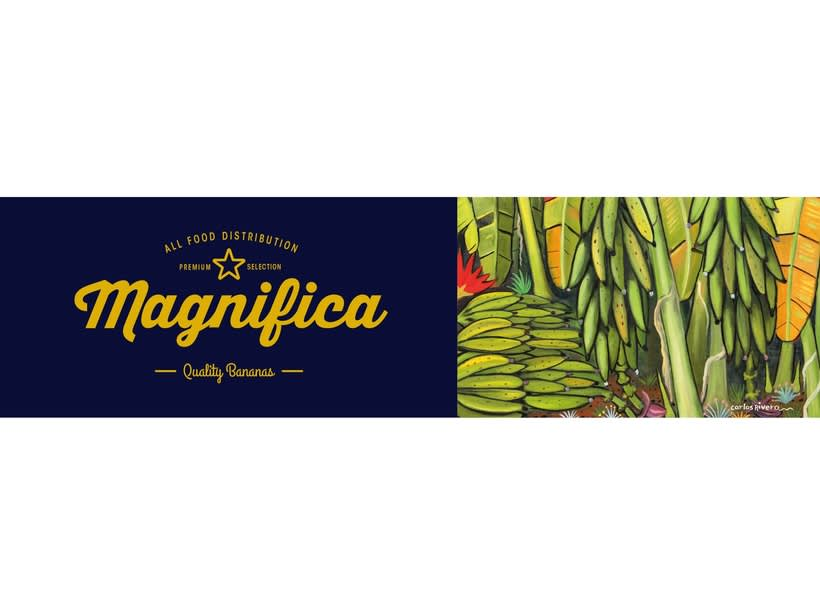 Magnifica Branding 3