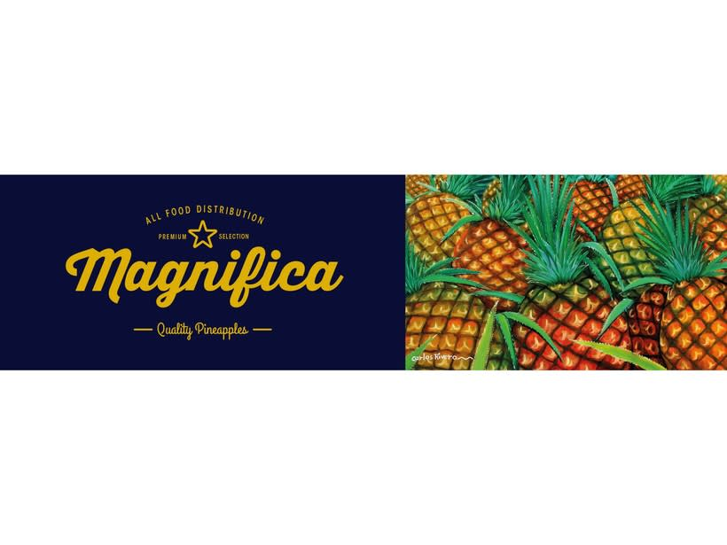 Magnifica Branding 4