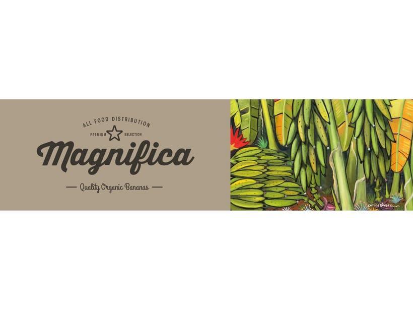 Magnifica Branding 5