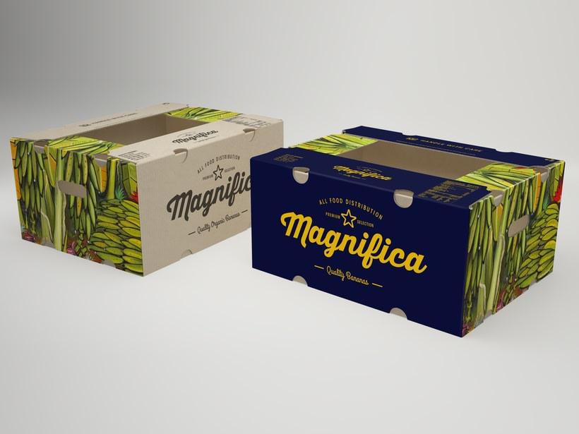 Magnifica Branding 6