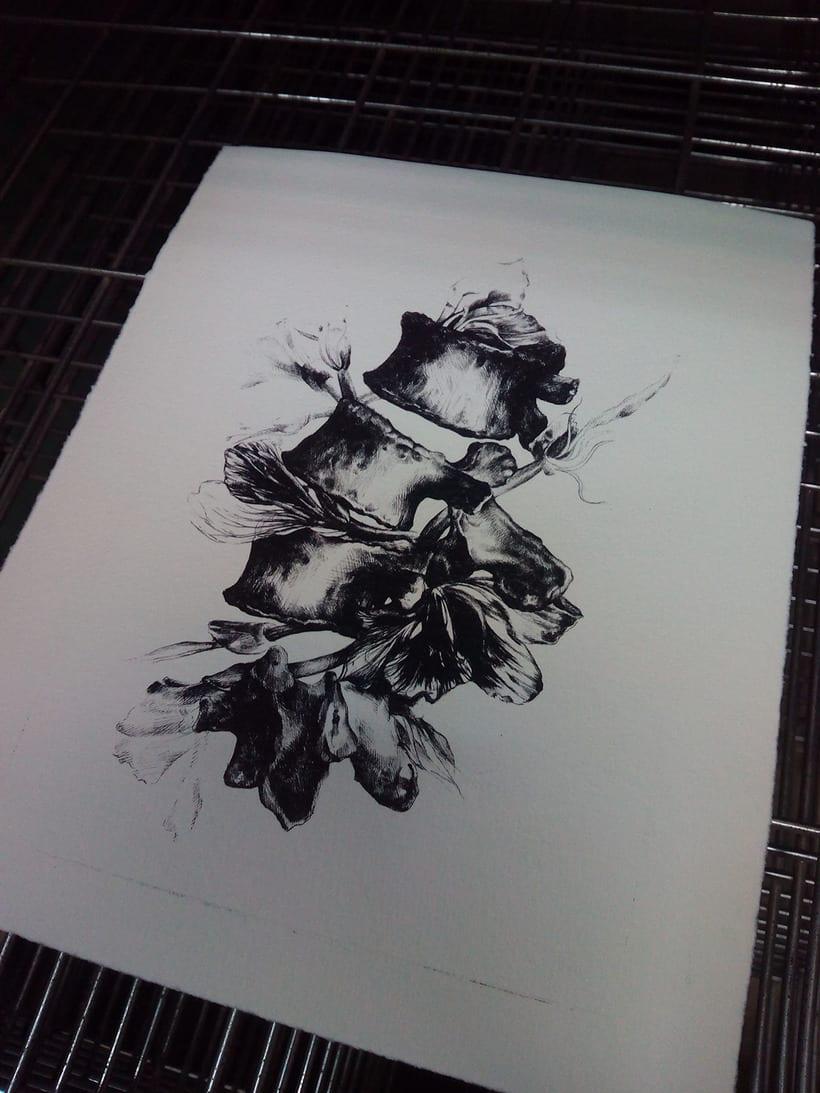 Litografía en Poliester 5