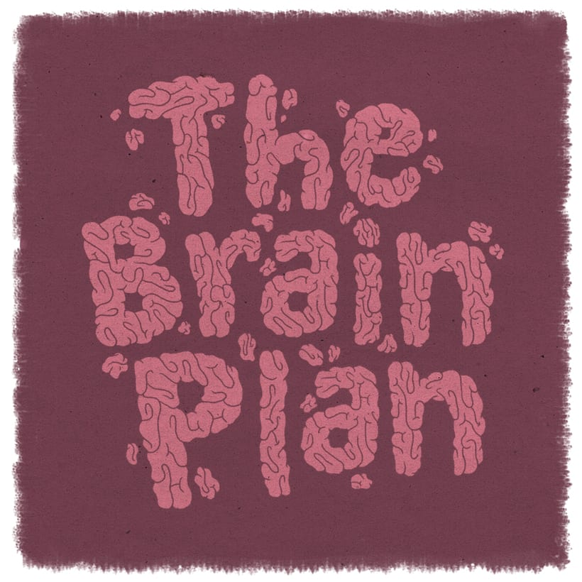 The brain plan 0
