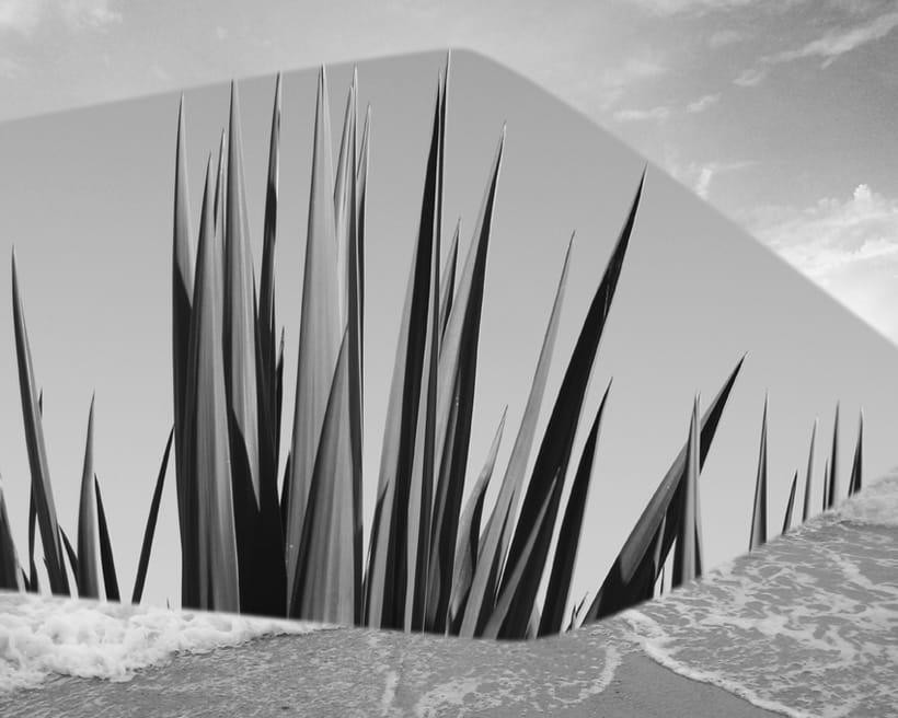 Exposición. Real surrea irreal. Los collages fotográficos de esta colección están formados por fotografías de paisajes y de diferentes elementos figurativos y texturas, que forman un conjunto donde transformo la realidad. Nuevo proyecto 2
