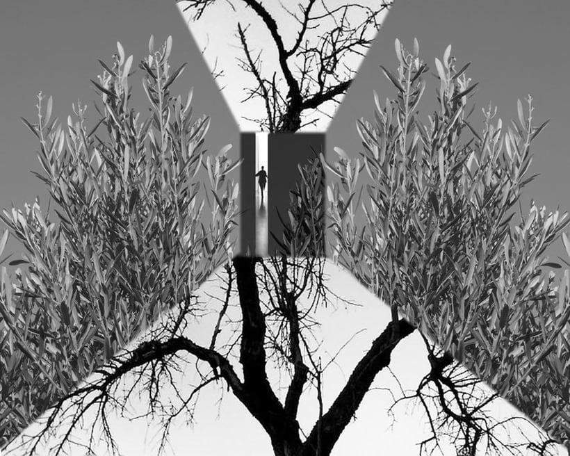 Exposición. Real surrea irreal. Los collages fotográficos de esta colección están formados por fotografías de paisajes y de diferentes elementos figurativos y texturas, que forman un conjunto donde transformo la realidad. Nuevo proyecto 4