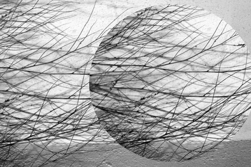 Exposición. Real surrea irreal. Los collages fotográficos de esta colección están formados por fotografías de paisajes y de diferentes elementos figurativos y texturas, que forman un conjunto donde transformo la realidad. Nuevo proyecto 5