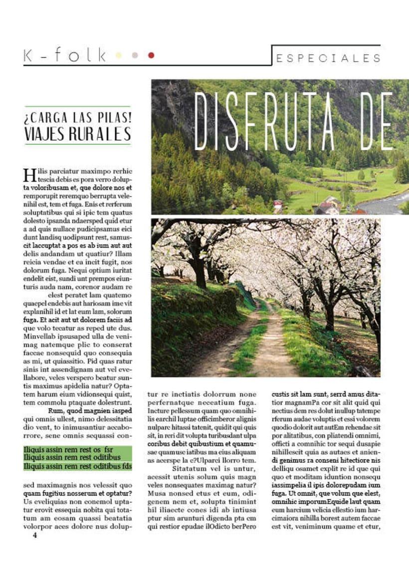 Diseño gráfico. Diseño editorial, revistas y flyers. 6