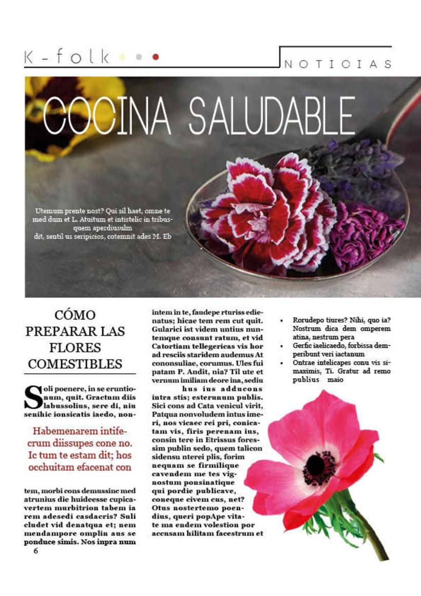 Diseño gráfico. Diseño editorial, revistas y flyers. 8
