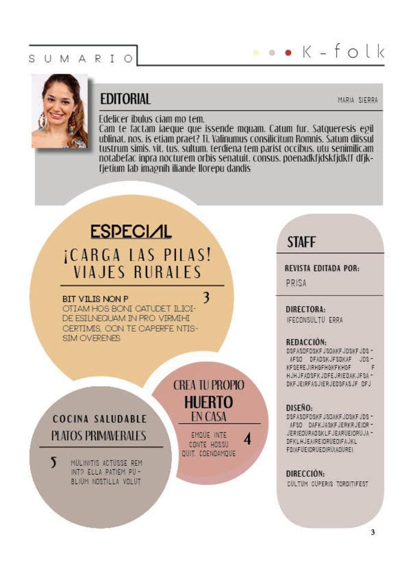Diseño gráfico. Diseño editorial, revistas y flyers. 5