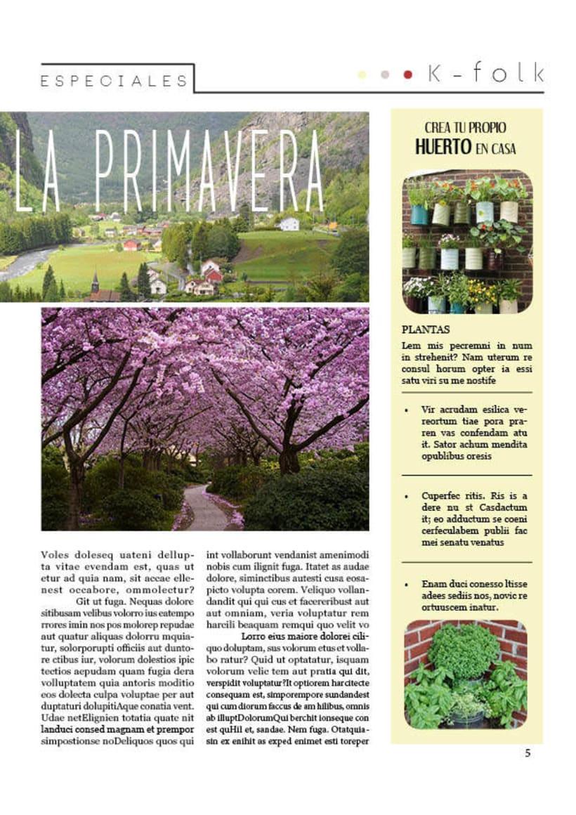 Diseño gráfico. Diseño editorial, revistas y flyers. 7
