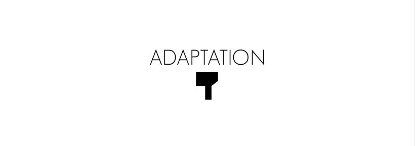 Adaptation 0