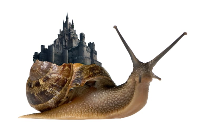 I'm Snailing 3