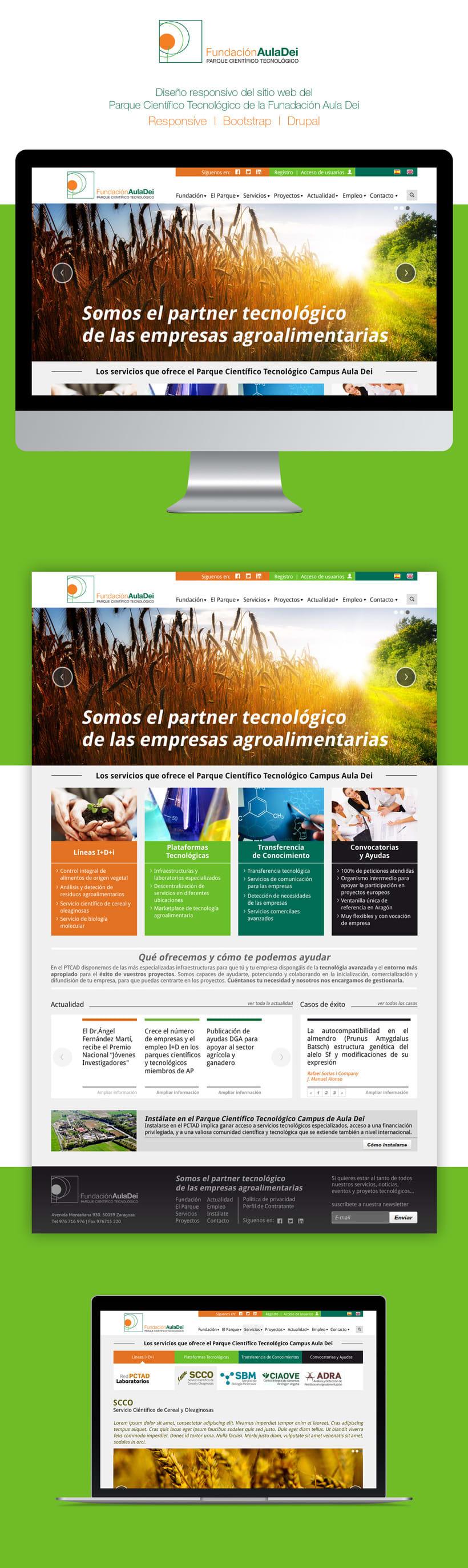 Fundación Aula Dei | Website -1